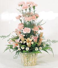 鲜花快递网-远方的祝福