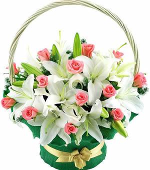 鲜花礼品-真诚祝福!