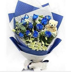送花-蓝色如意