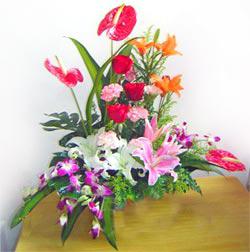 鲜花礼品-祝福花篮