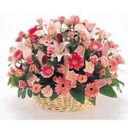 网上花店-祝您健康