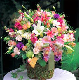 鲜花礼品-吉祥宝贵