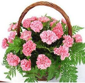 订花服务-幸福之花