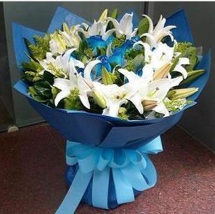 鲜花速递网-蓝色的梦
