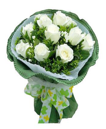 鲜花订购-纯爱