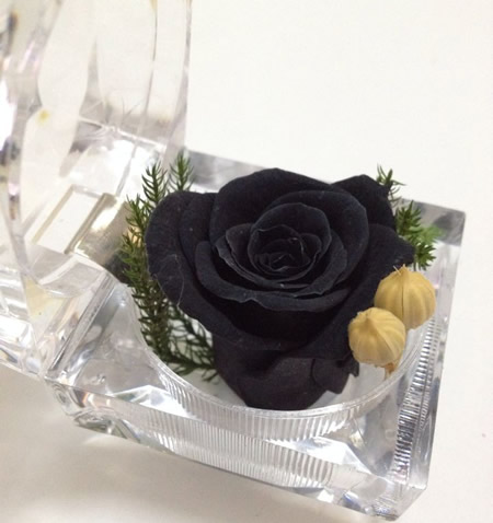 鲜花礼品店-戒指盒保鲜花-黑玫瑰