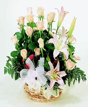 鲜花礼品-清新脱俗