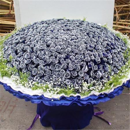 网络订花-蓝色梦之恋