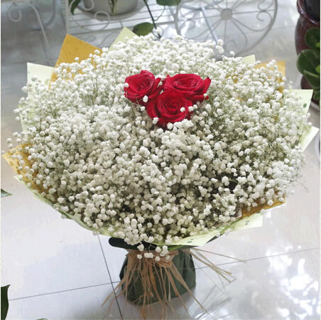 鲜花订购-满天星的一生