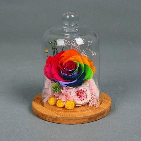 鲜花速递网-永生花 单朵彩虹玫瑰