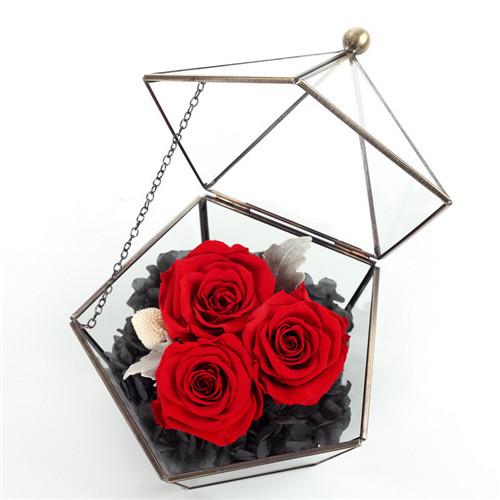 网上花店-保鲜花五星玻璃花房红