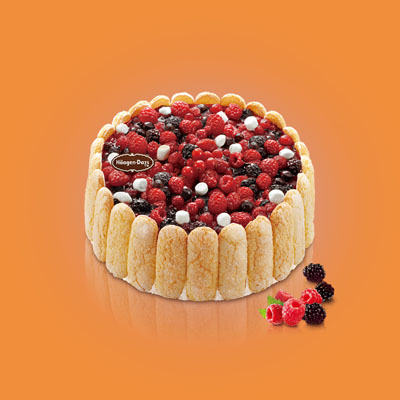 生日蛋糕-哈根达斯 冰淇淋蛋糕 夏洛特