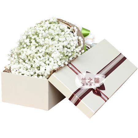 鲜花网-纯纯的爱