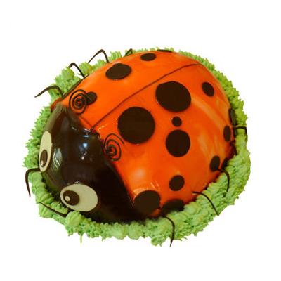 巧克力蛋糕-甲壳虫