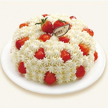 生日蛋糕-温馨满载