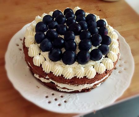 巧克力蛋糕-蓝莓花花世界