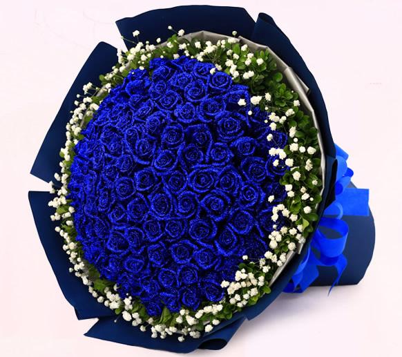 鲜花快递网-海之蓝