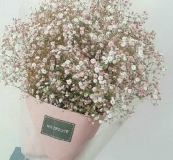 鲜花店-如花
