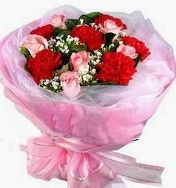 定州鲜花网:温馨如诗