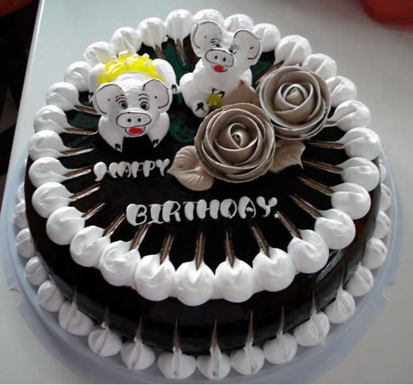 菏泽生日蛋糕:宠物猪