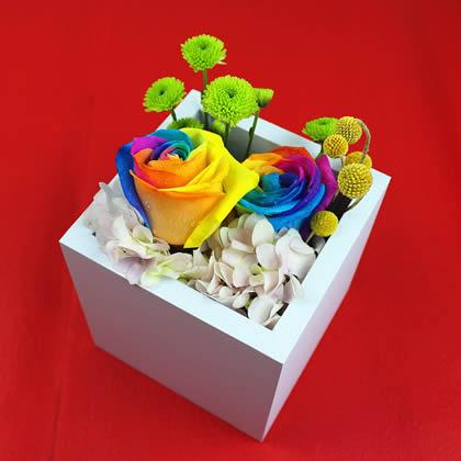 定州永生花:彩虹玫瑰 真爱一生