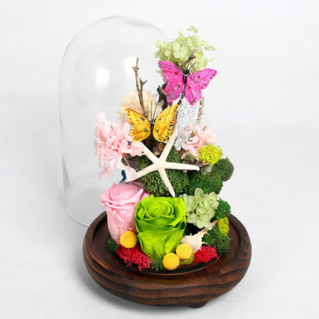 南京鲜花:保鲜花 至美丽的你
