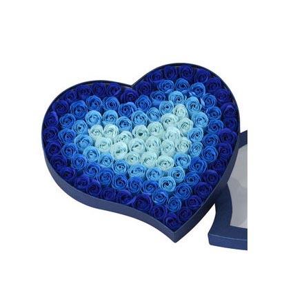 驻马店肥皂花:肥皂花--渐变蓝