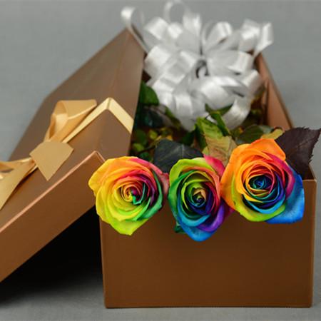 驻马店永生花:彩虹玫瑰-永恒
