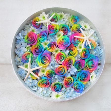 南京永生花:彩虹玫瑰-七彩的爱