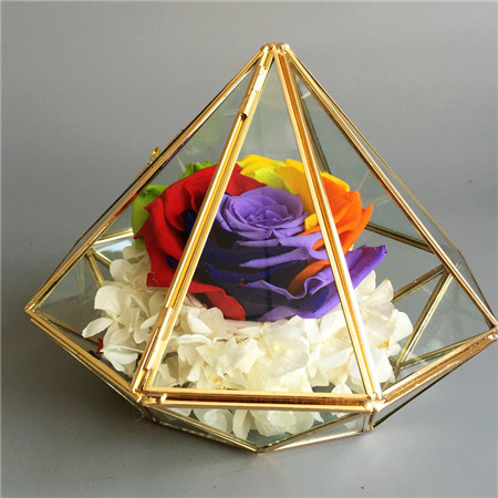 合肥鲜花:钻石款彩虹色