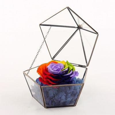 合肥永生花:五星玻璃花房 七彩玫瑰
