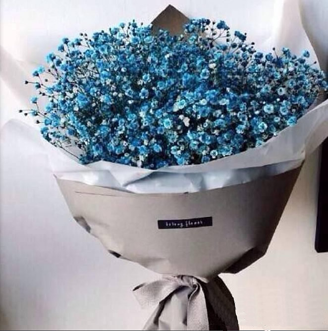 延吉鲜花礼品鲜花-满天星